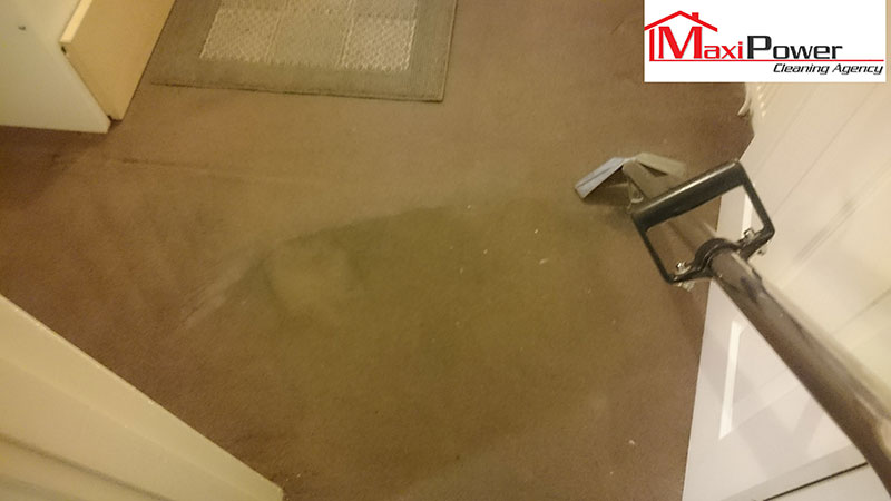Carpet Cleaning: Before & After our service