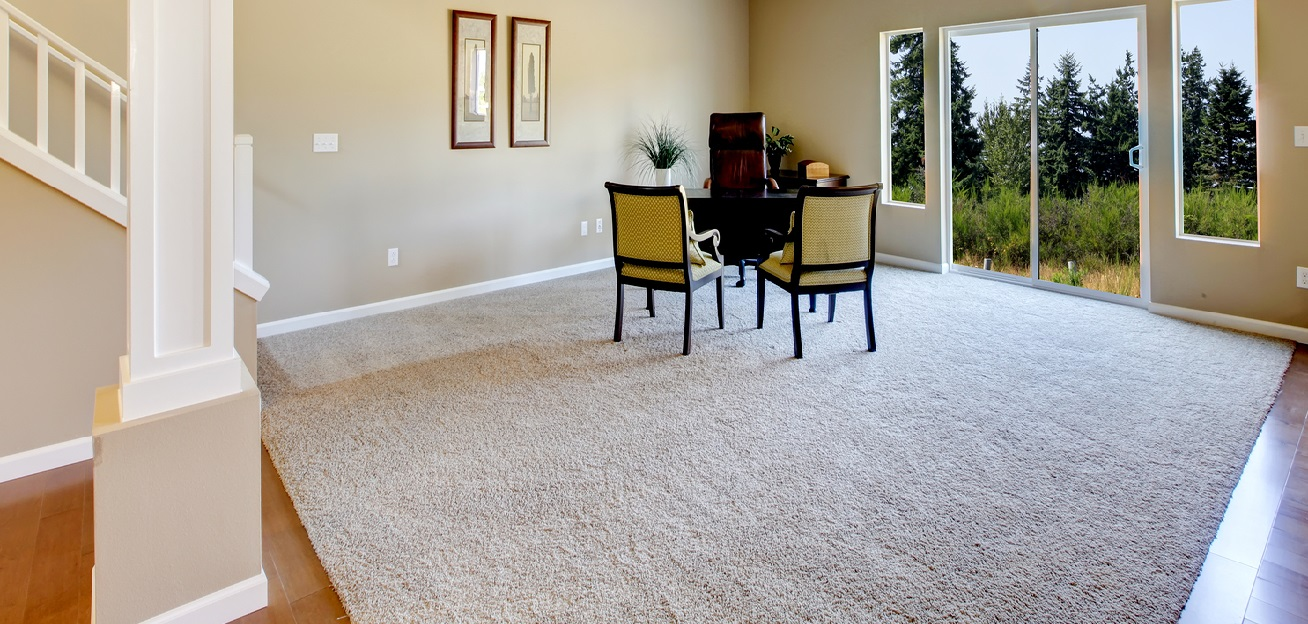 carpet cleaning and rugs by Maxipowercleaning